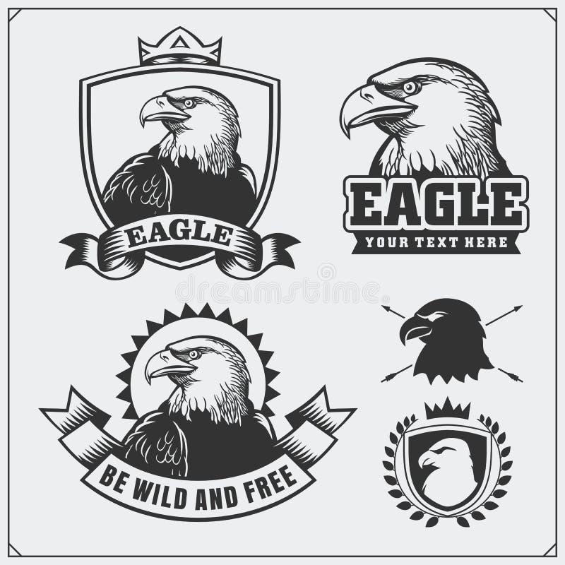 Eagle Heraldry Coat av armar Etiketter, emblem och designbeståndsdelar för sportklubba stock illustrationer