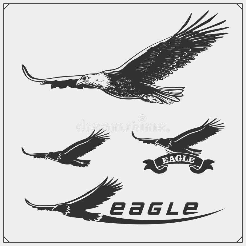 Eagle Heraldry Coat van Wapens Etiketten, emblemen en ontwerpelementen voor sportclub royalty-vrije illustratie