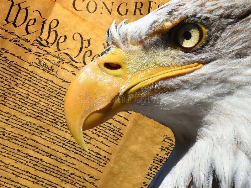 Eagle-het symbool Amerikaanse grondwet van de portretclose-up royalty-vrije stock foto
