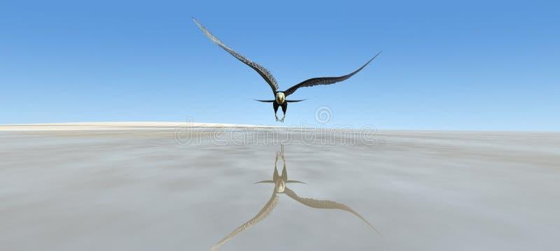 Eagle-het vliegen vector illustratie
