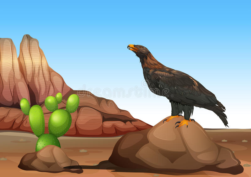 An eagle. Illustration of an black eagle vector illustration