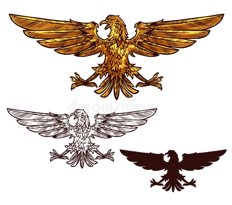 Eagle lub jastrzębia heraldyczny złoty ptak royalty ilustracja