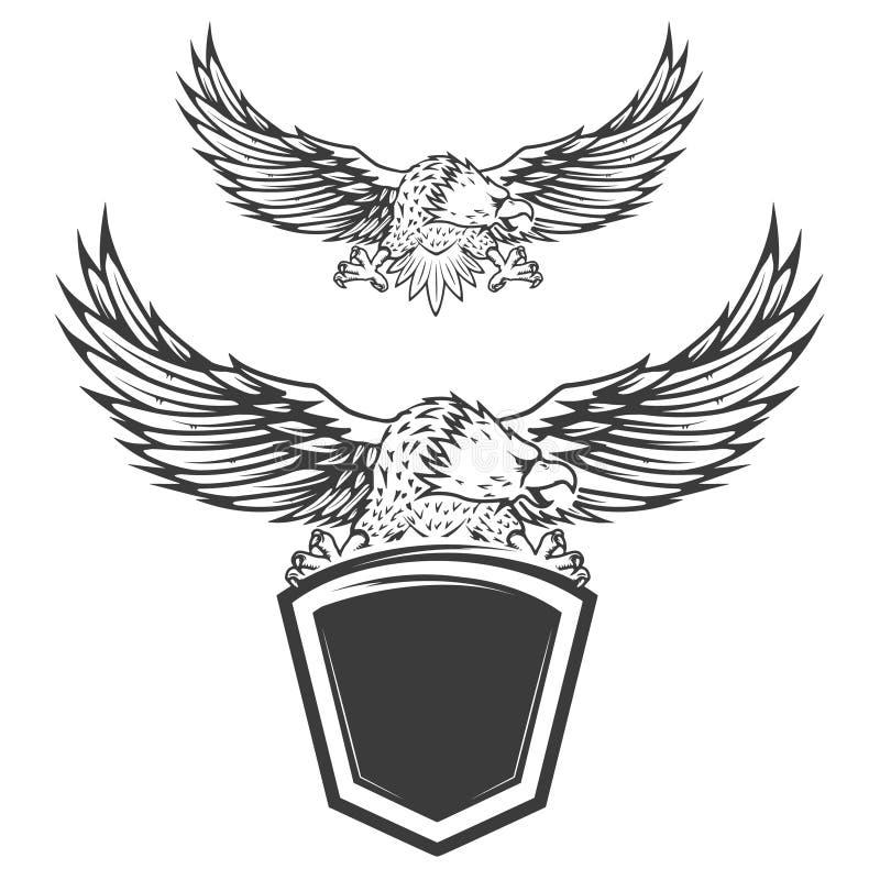 Eagle no protetor isolado no fundo branco Elemento do projeto para ilustração do vetor
