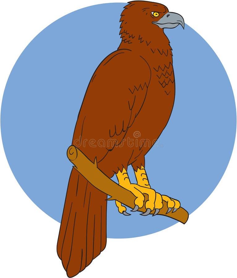 Eagle Perch Drawing Cale-coupé la queue par Australien illustration stock