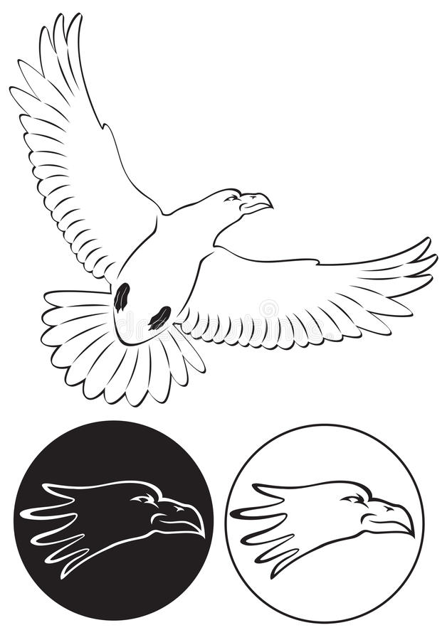 Download Eagle stock photo. Image of beak, falcon, icon, feathers - 35095946