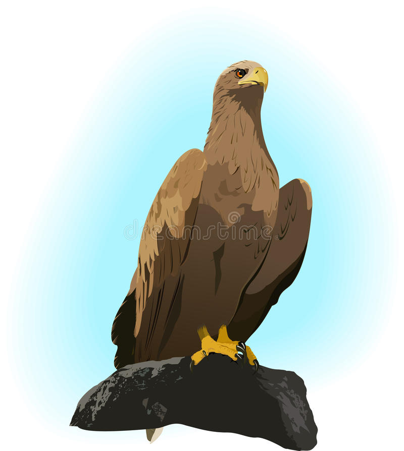 Eagle on the rock vector illustration