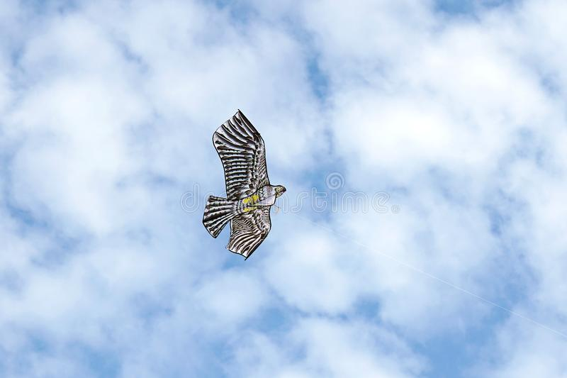 An eagle-shaped kite flies in the sky royalty free stock image