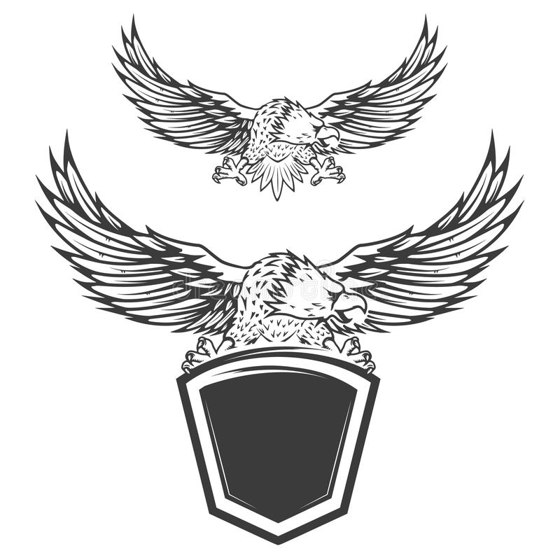 Eagle on shield isolated on white background. Design element for vector illustration