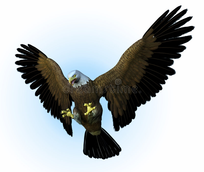 Eagle Swooping Down - includes vector illustration