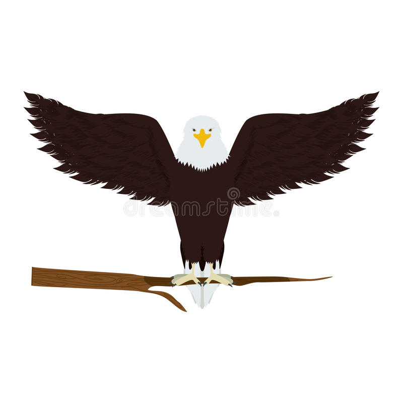 Eagle on a tree branch stock illustration