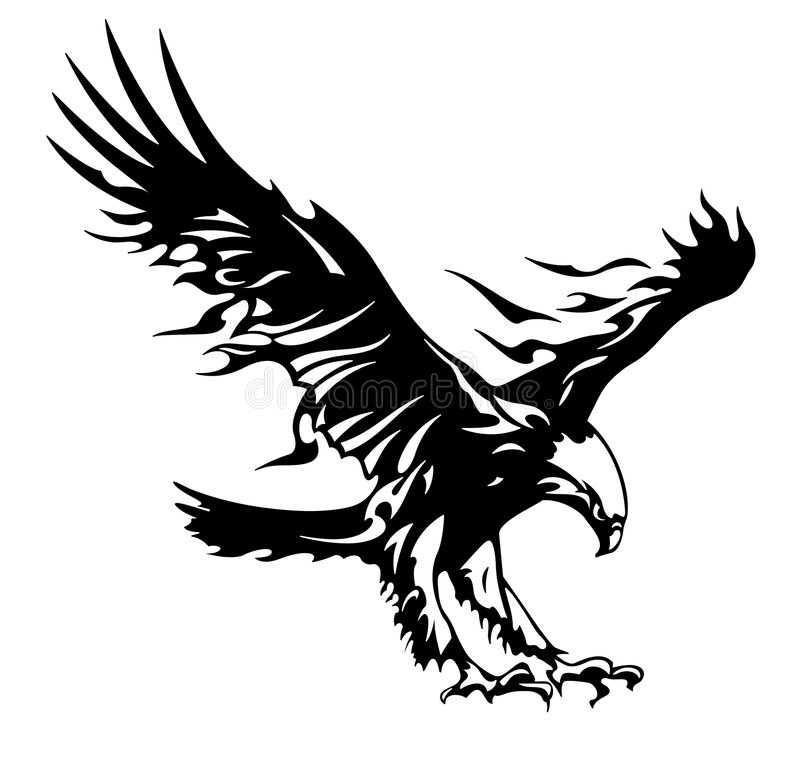 Download Eagle Tuning Royalty Free Stock Photos - Image: 8122928