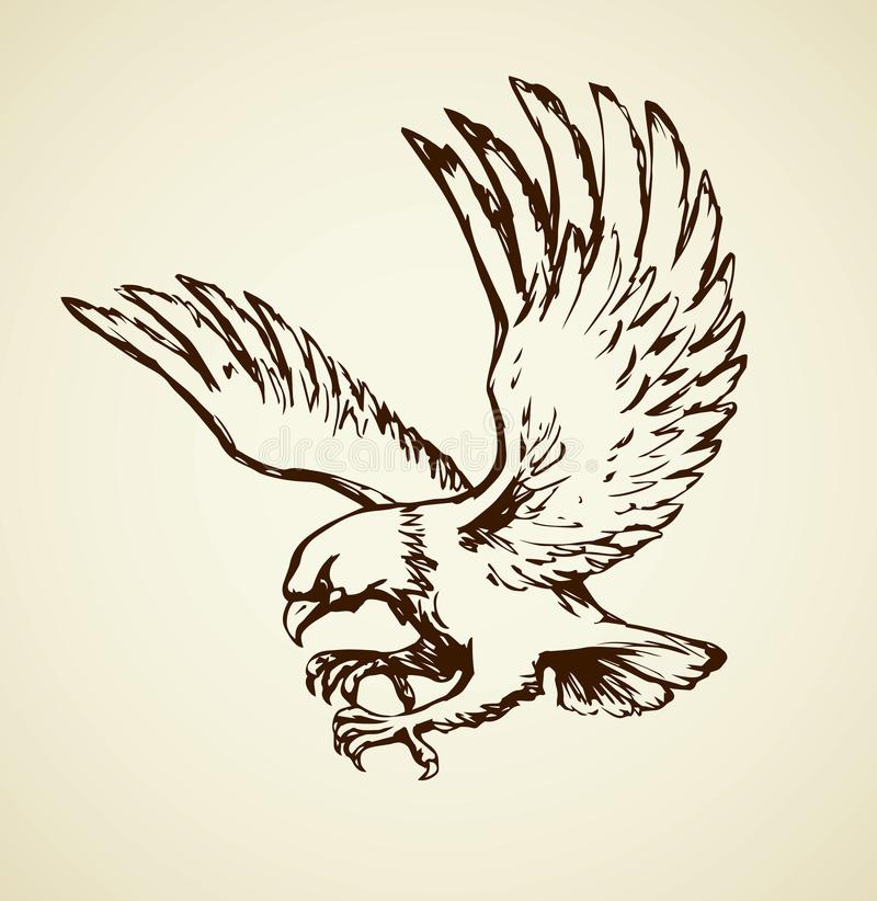 Free Eagle. Vector Drawing Royalty Free Stock Images - 103314889