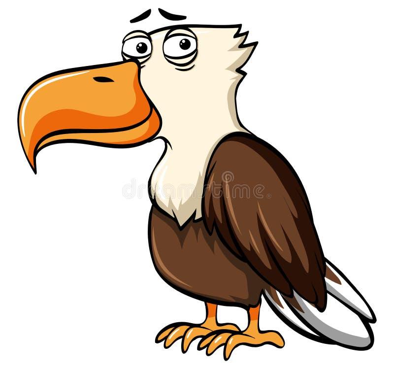 Eagle z smutną twarzą royalty ilustracja