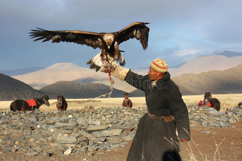 Eaglehunter in Mongolei stockbild