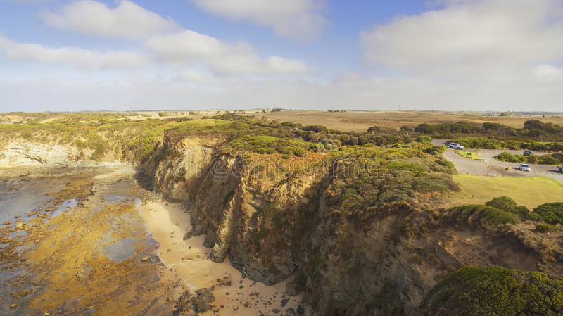 Eagles гнездятся, Австралия стоковые фото