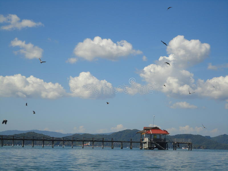 Eagles hovering over a small jetty royalty free stock photo