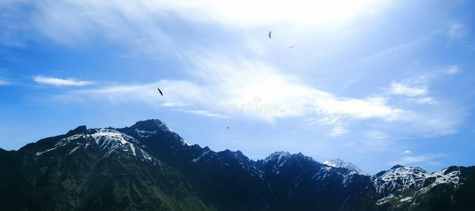 Eagles over mountain ridge stock photography