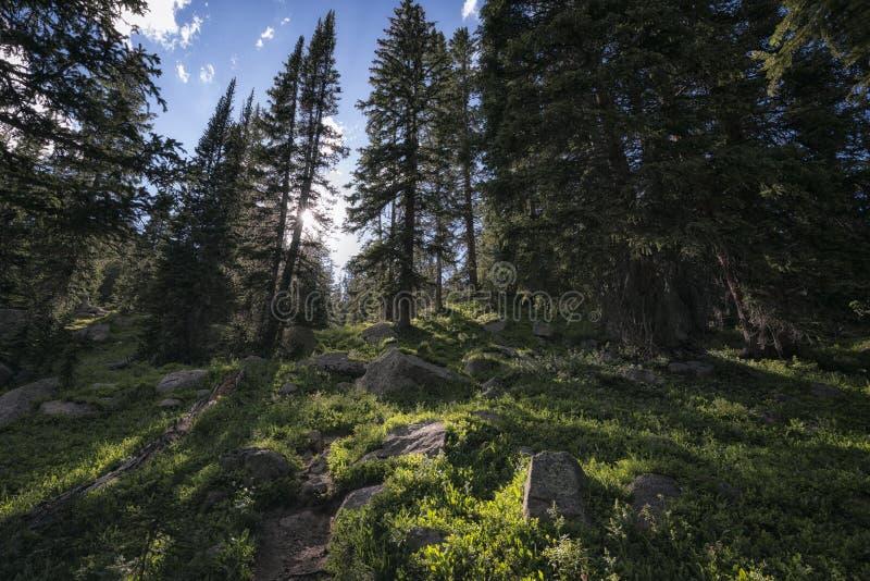 Eagles redevildmark, Colorado arkivfoto