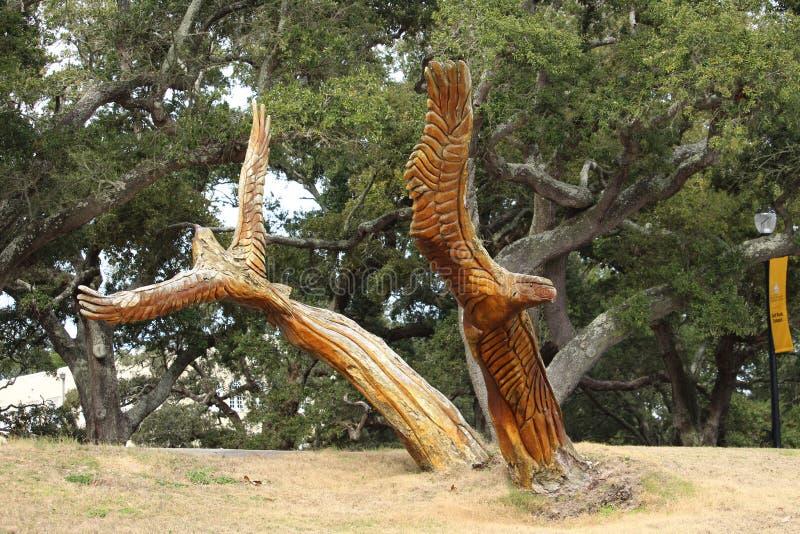 Eagles resning från askaen av Katrina royaltyfri fotografi