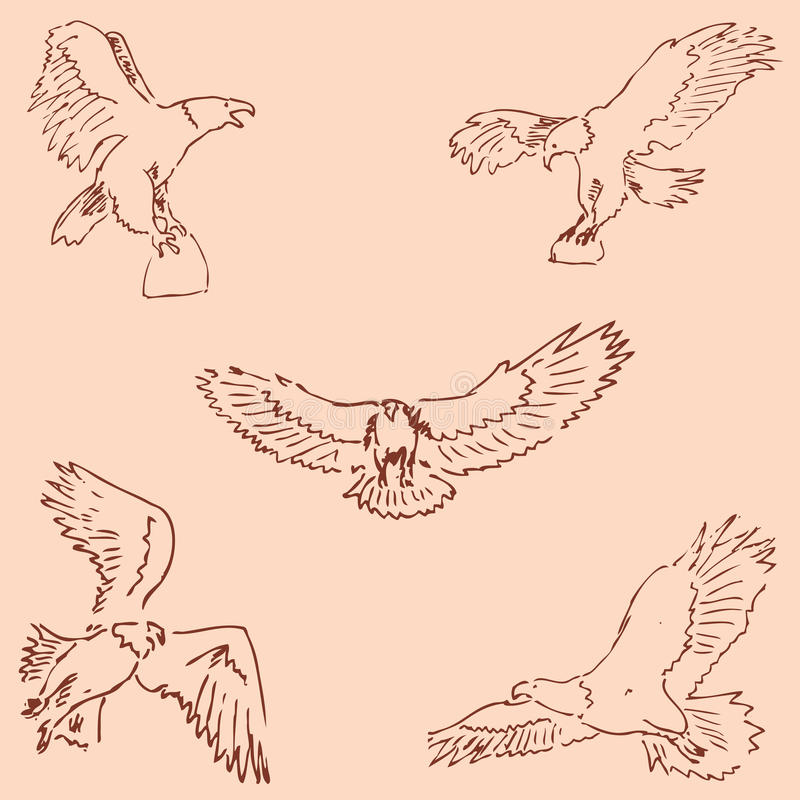 Eagles. Sketch pencil. Drawing by hand. Vintage colors. Vector. Eagles. Sketch pencil. Drawing by hand. Vintage colors Vector image royalty free illustration