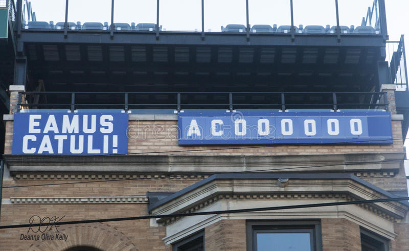 Download Eamus Catuli Sign; Let`s Go Cubs Editorial Stock Photo   Image Of