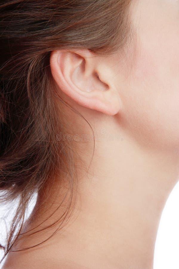 Ear stock photos