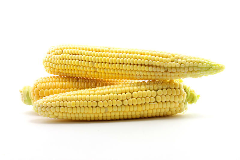 Download Ear of corn stock illustration. Illustration of macro - 26216400