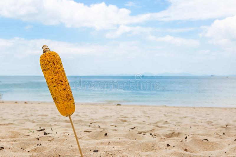 Ear of fried corn on a stick. Stuck in the sand on a tropical beach. Close-up. Sea and blue sky on background royalty free stock image