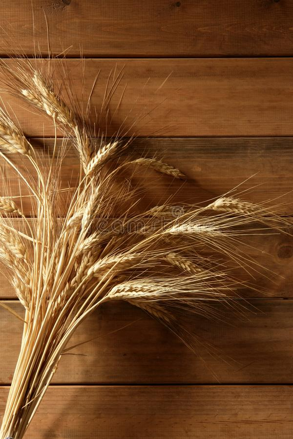 Free Ear Golden Wheat Spike Over Wooden Background Royalty Free Stock Photography - 10981577