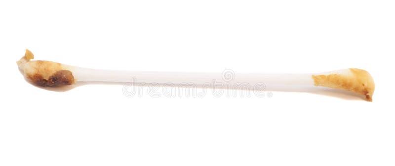 Ear wax on cotton swab stock image
