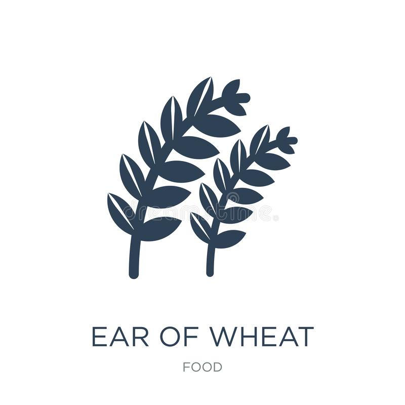 Ear of wheat icon in trendy design style. ear of wheat icon isolated on white background. ear of wheat vector icon simple and. Modern flat symbol for web site royalty free illustration