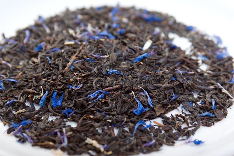 Earl Grey teawith sheet cornflower and bergamot royalty free stock photos