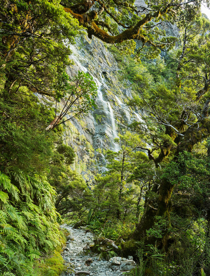 Earland Falls. On Routeburn Track in New Zealand royalty free stock photography