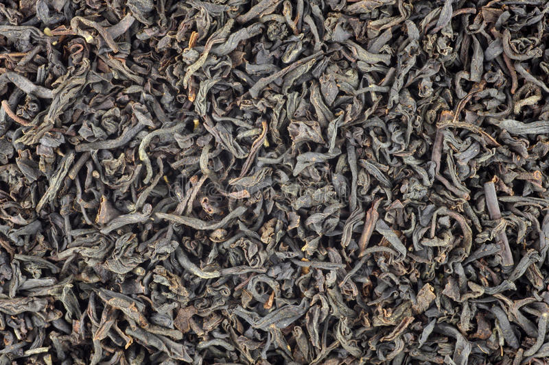 earlgreytea royaltyfria bilder