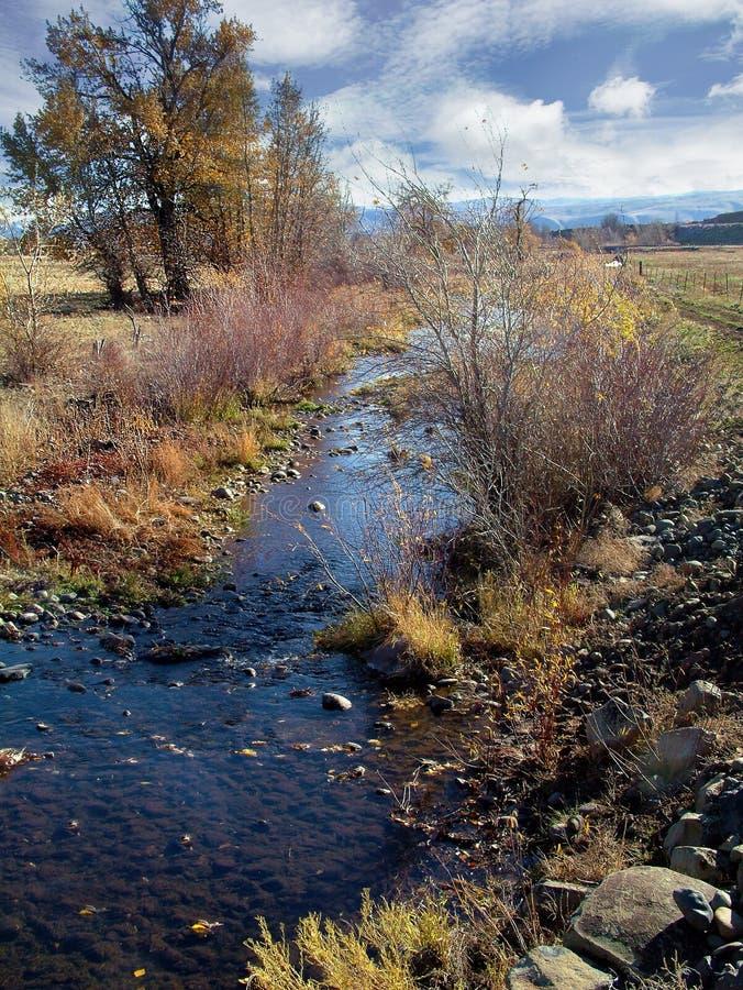 Earling novembre à Washington oriental photographie stock libre de droits