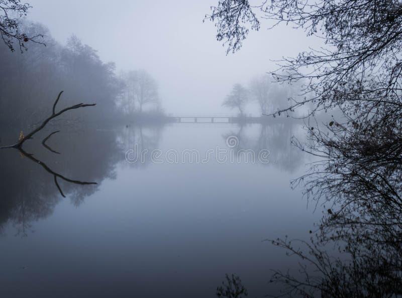 Earlswood sjöar på ett dimmigt, Misty Winters Morning arkivbild