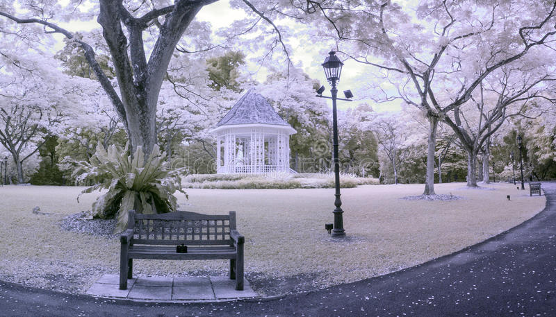 Early Afternoon Infra Red Scene Singapore Botanical Gardens. A daylight wide view of UNESCO World Heritage Site botanical gardens at the pavilion section stock images