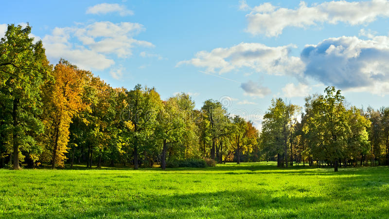 Early Autumn. Park with green meadow at early autumn stock images