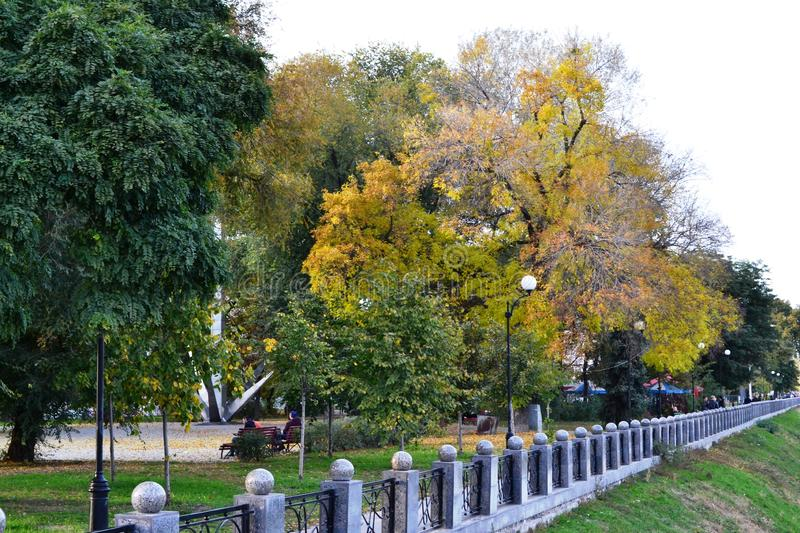This is an early autumn in a city park. With green and yellow leaves of trees royalty free stock photography