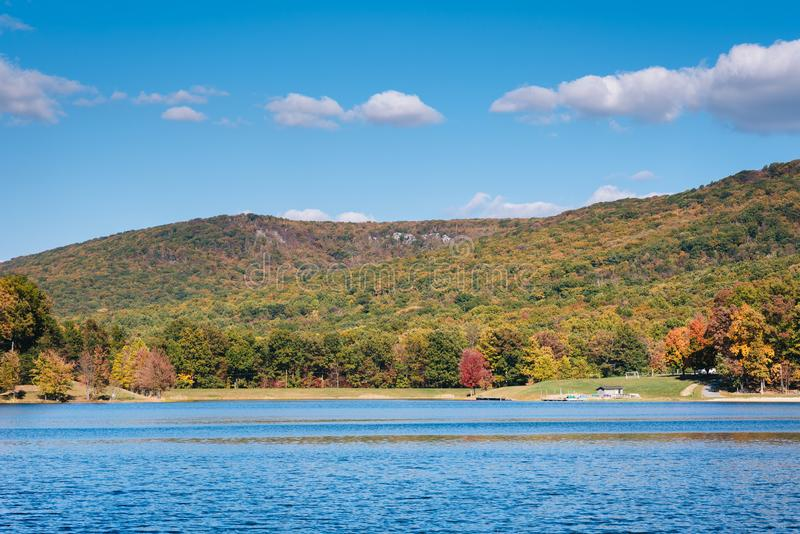 Early autumn color at Greenbrier Lake, at Greenbrier State Park in Maryland.  royalty free stock photography
