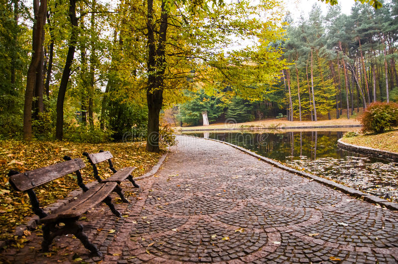 Early autumn in park. Early autumn. The path goes around the lake. Benches on the sidelines stock images