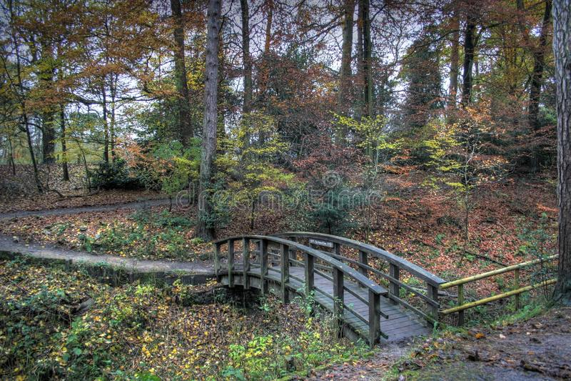 Early Autumn. In Styal Woods in The Bollin Valley, Cheshire, UK royalty free stock photography