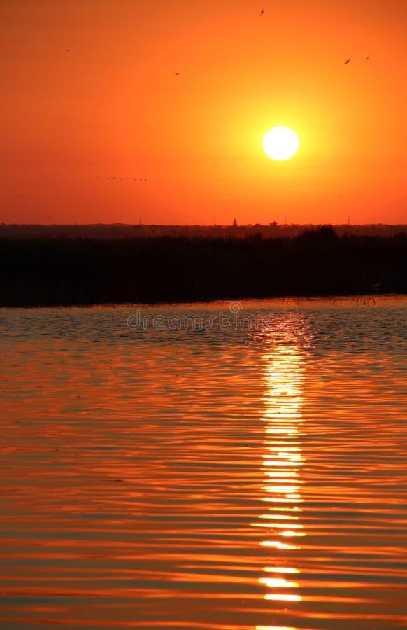 Early dawn stock photo