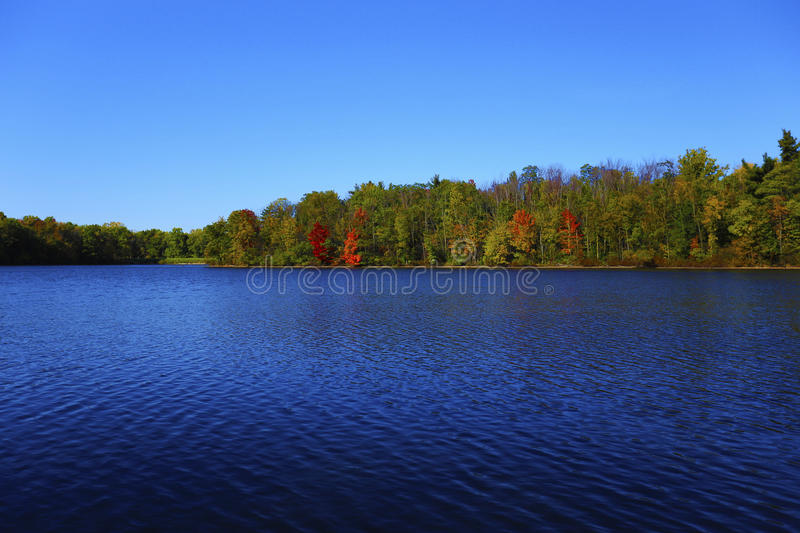 Early fall at Findley state park royalty free stock images