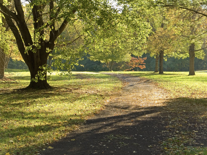 Early Fall Path stock photos