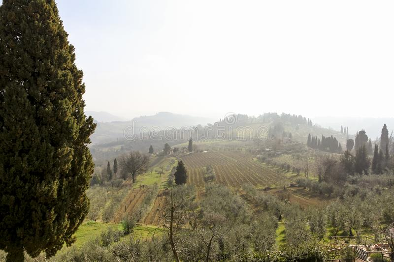 Early foggy morning. Beautiful spring landscape in Tuscany, Italy, Europe stock photo