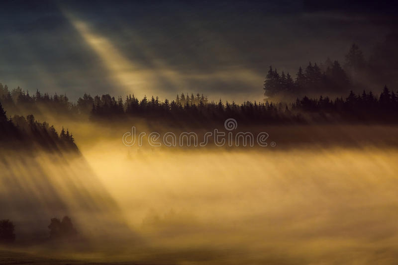 Early fogy autumn morning on the Czech Austrian border. Misty woods and field, Europe landscape royalty free stock photo
