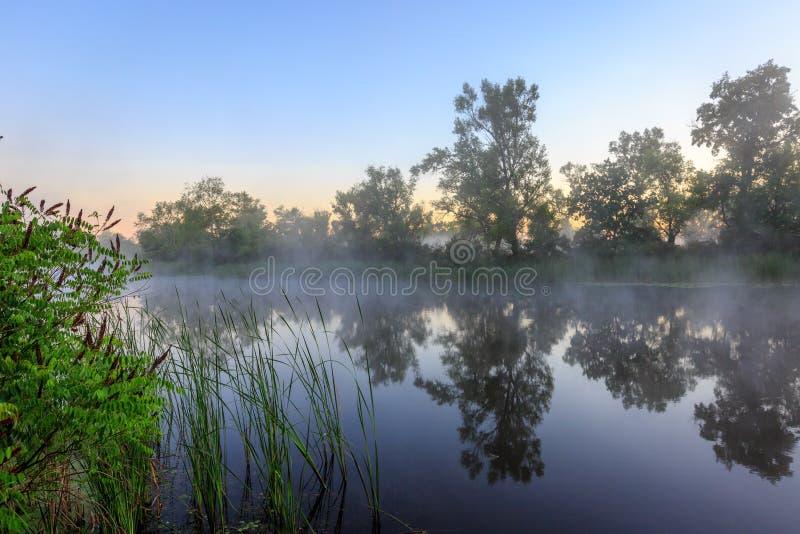 Early monring on lake. Nice early morning scene on lake stock photography