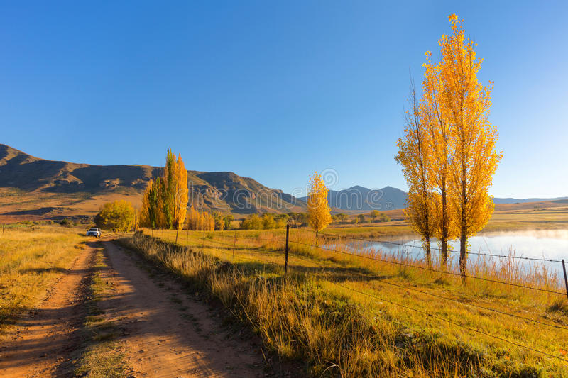 Early morning autumn colours. Near Clarens, South Africa royalty free stock photo