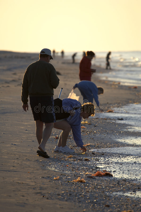 Early morning avid shell hunters. Looking for freshly washed up sea shells near bowmans beach famous for the abundance of shells on Sanibel Island Florida stock photography